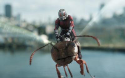 Ant-Man et la Guêpe : un cocktail réussi d'action et d'humour !