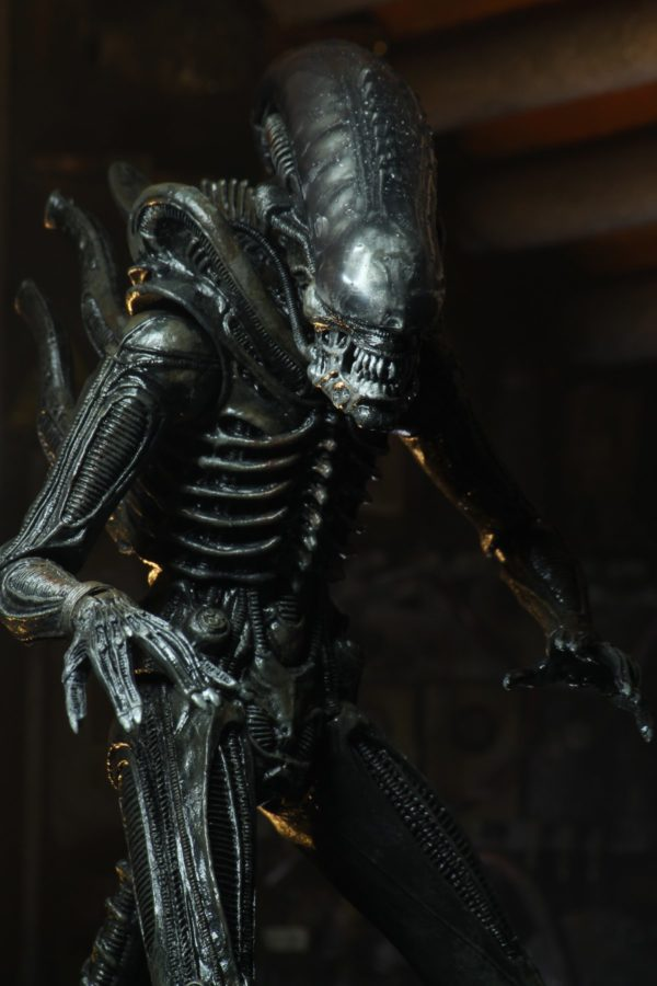BIG CHAP ULTIMATE FIGURINE 1-4 ALIEN 1979 40TH ANNIVERSARY NECA 56 CM (6) 634482515983 kingdom-figurine.fr
